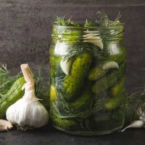 The Artisan series - Pickling and fermenting with Michelle Tournier